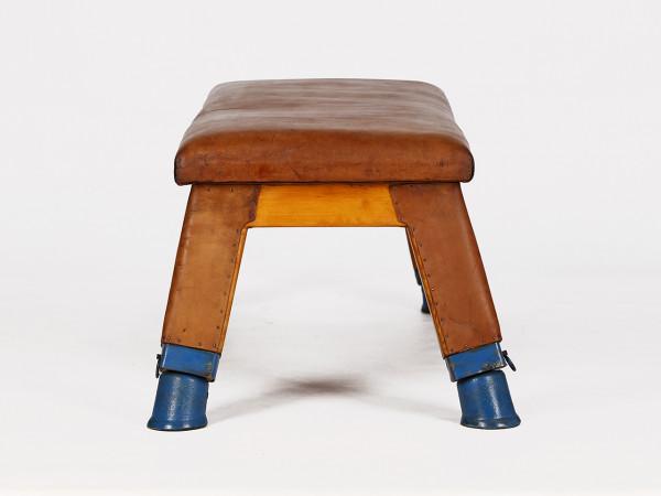 Leder Sitzbank
